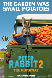 PETER HASE 2 (2019)