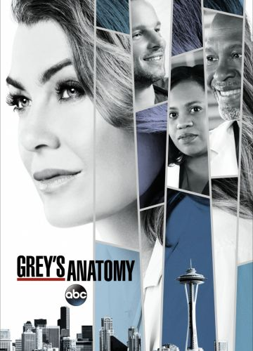 Grey's Anatomy 16 Staffel (2019)
